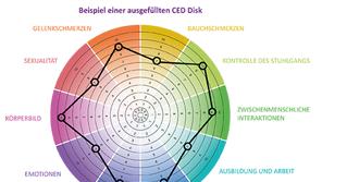 Scheibenweise - Mit Hilfe der CED Disk ins Gespräch kommen